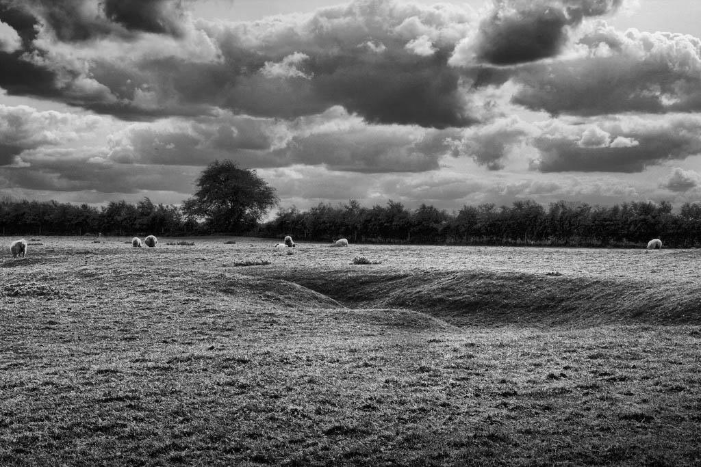 Godwick 1 © Nick Stone
