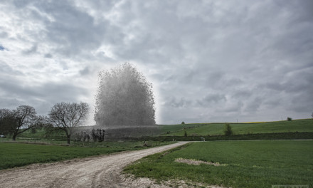 Ghosts: Hawthorn Ridge the Somme