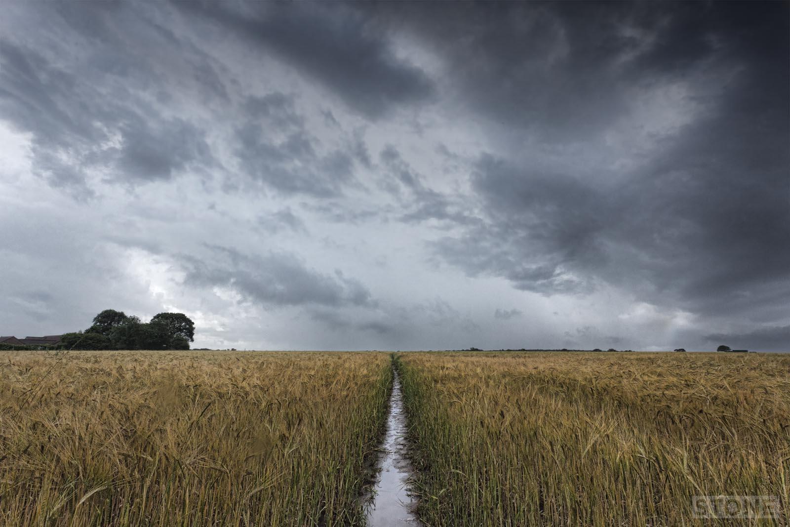 Walsham © Nick Stone 2014