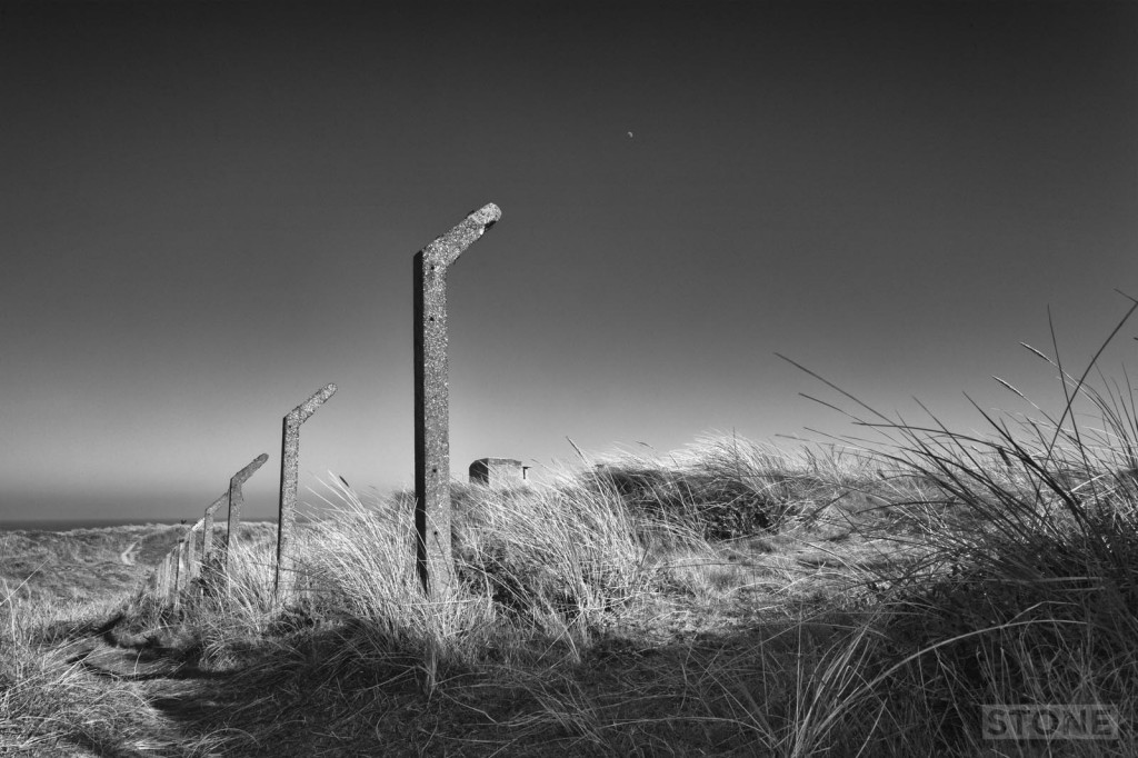 winterton 3 © Nick Stone 2014