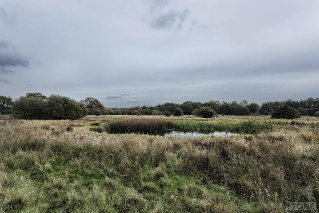 pingos Norfolk © Nick Stone 2014 6958