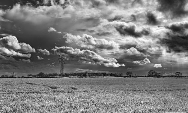 Lost in a Landscape: Kett's Lane, Swannington