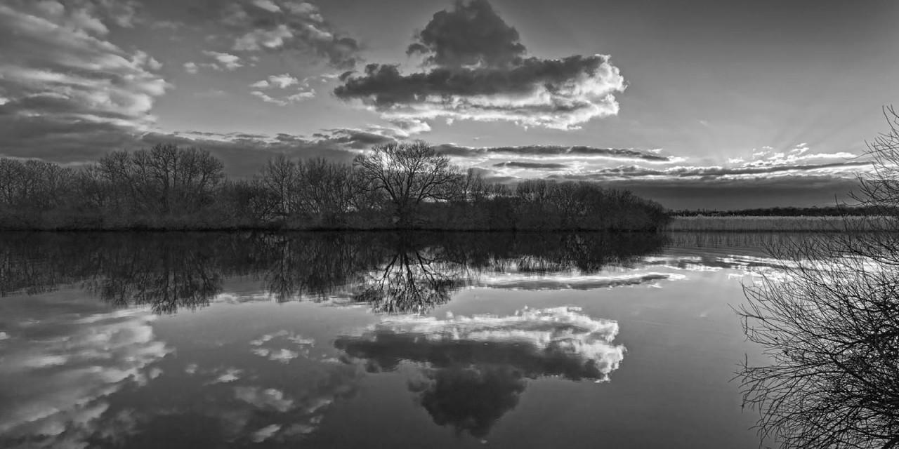 Waterland: Strumpshaw fen