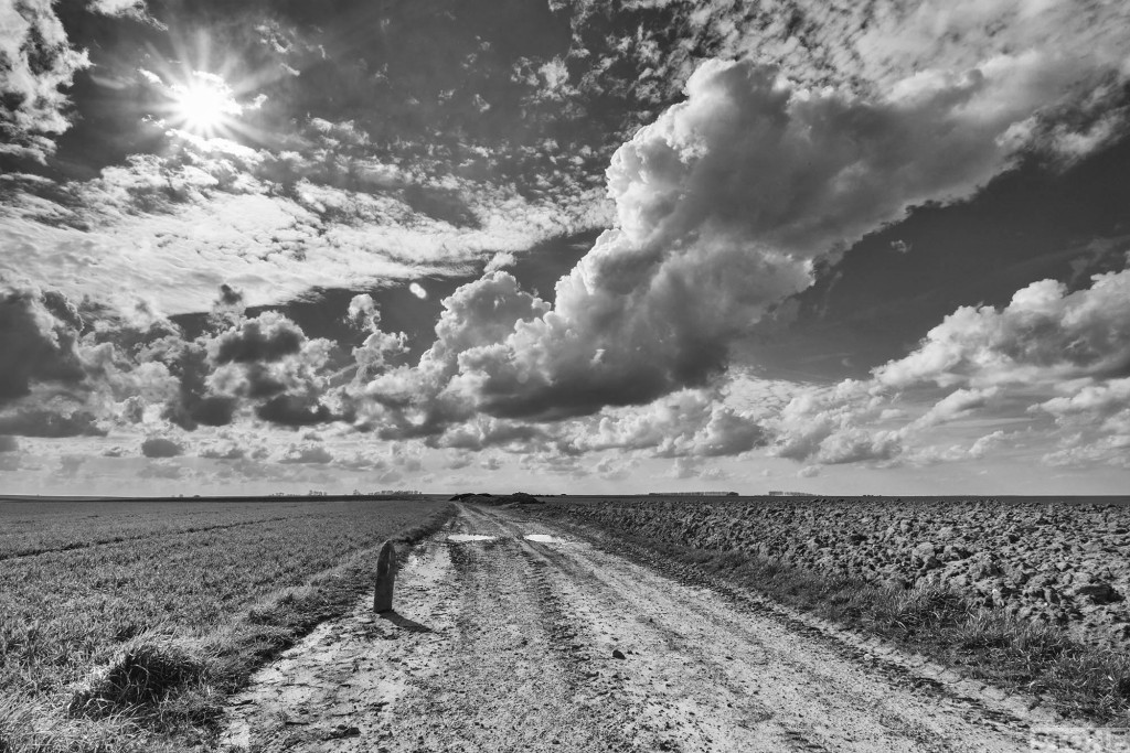 Deadly scrap Courcelette © Nick Stone Somme