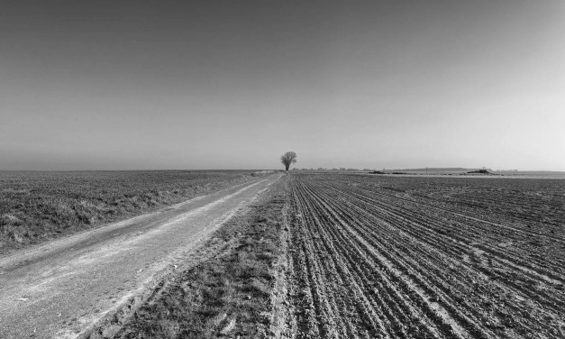 Vanishing Point: Carnoy to Montauban