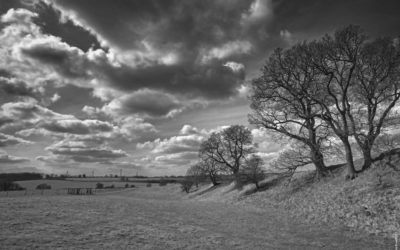 Lost in a landscape: Caistor St Edmund – A buried town