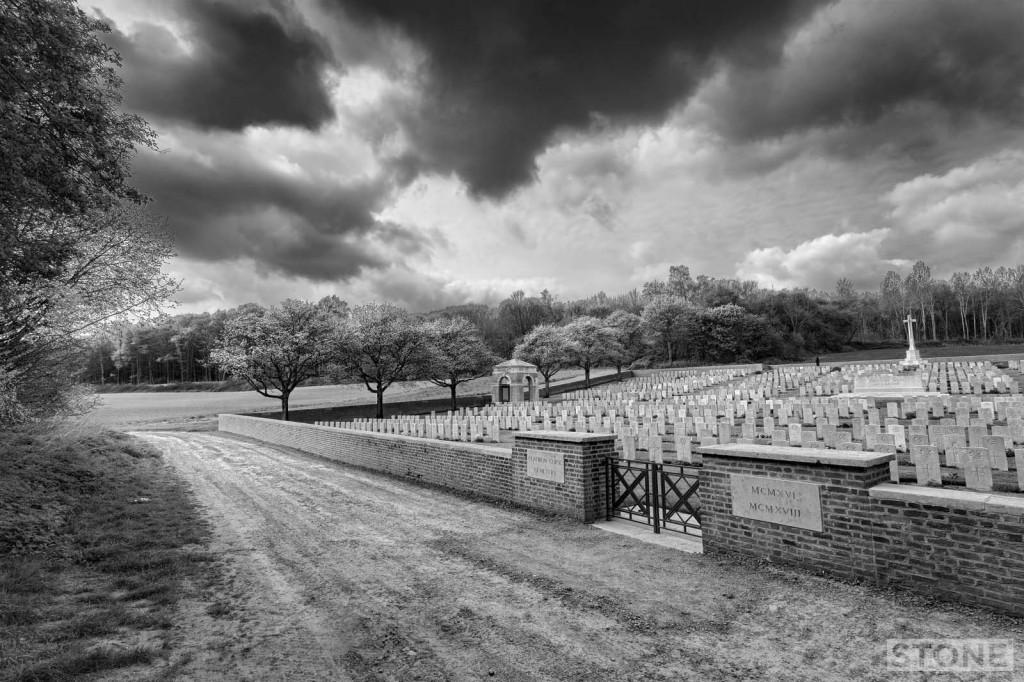 4465 Flatiron copse © Nick Stone 2014