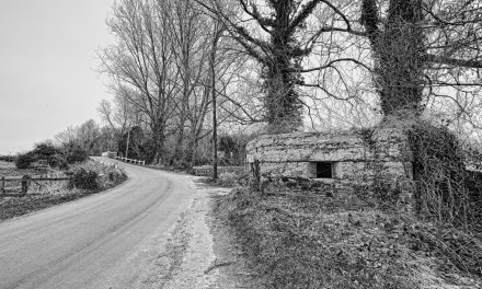 Forgotten outposts: The Bure line at Oxnead