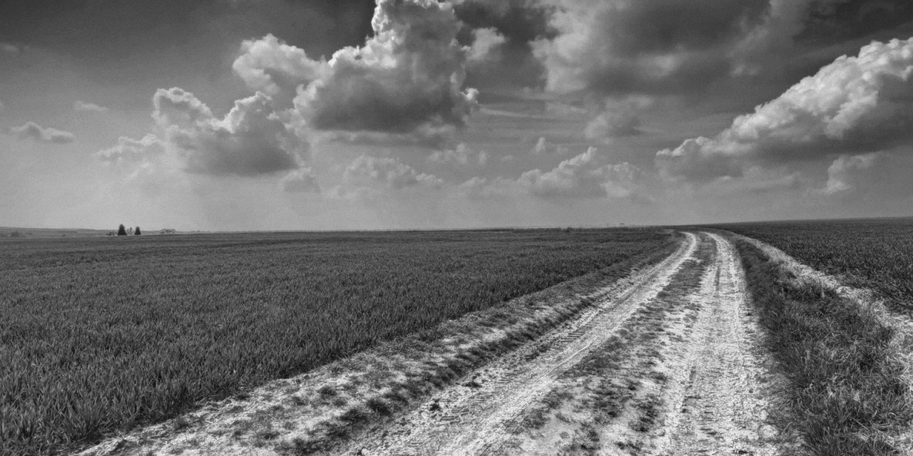 Vanishing Point: Fricourt New
