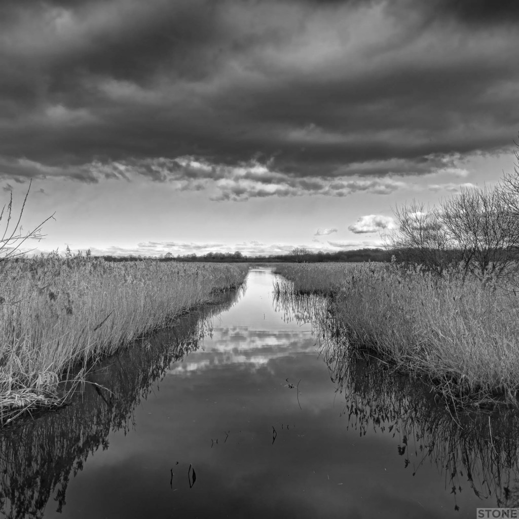 Strumpshaw fen © Nick Stone 8283