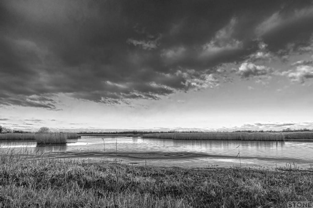 Strumpshaw fen © Nick Stone 8291