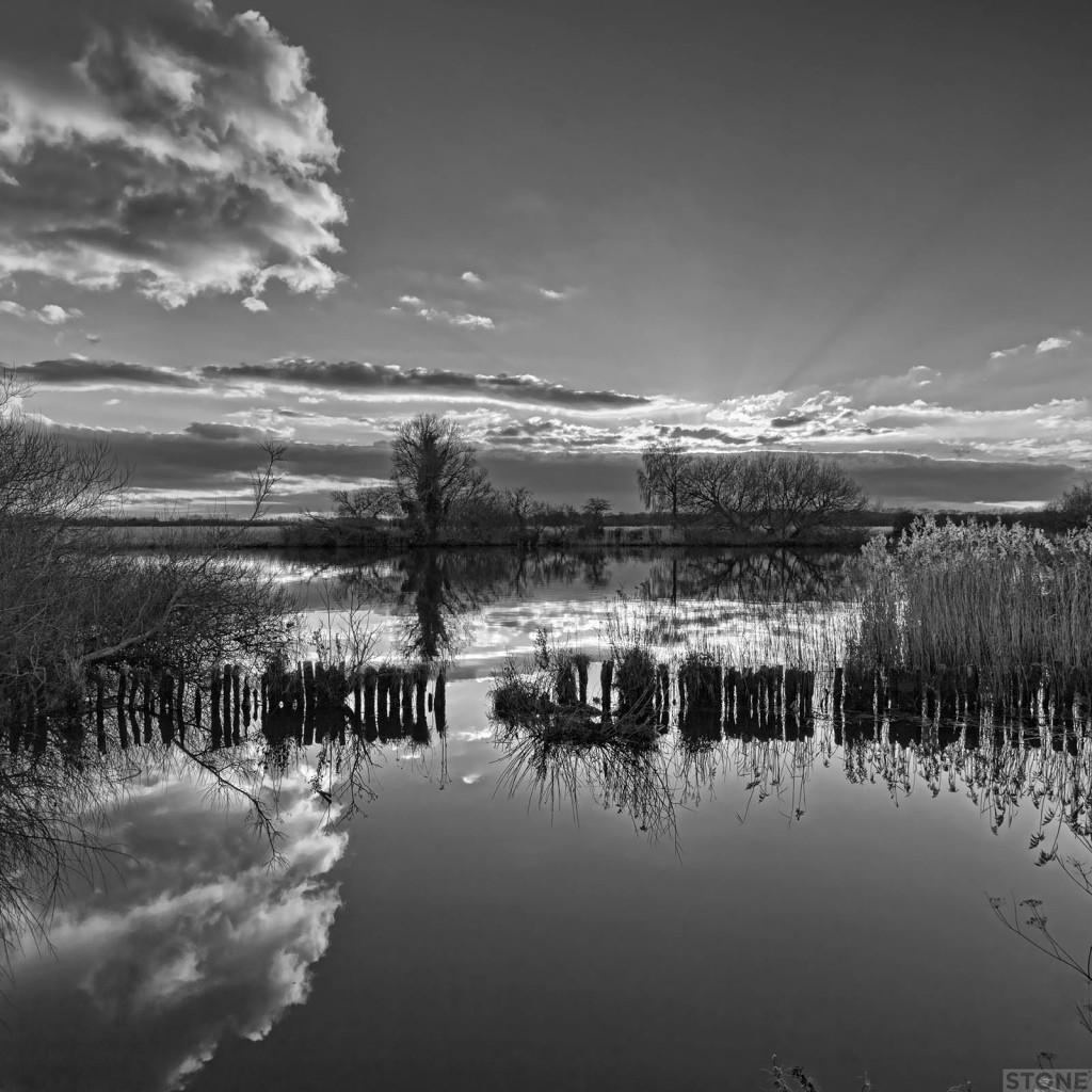 Strumpshaw fen © Nick Stone 8351