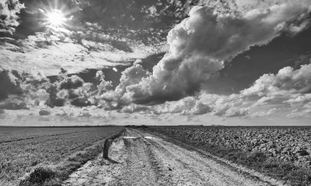 Vanishing point: Courcelette