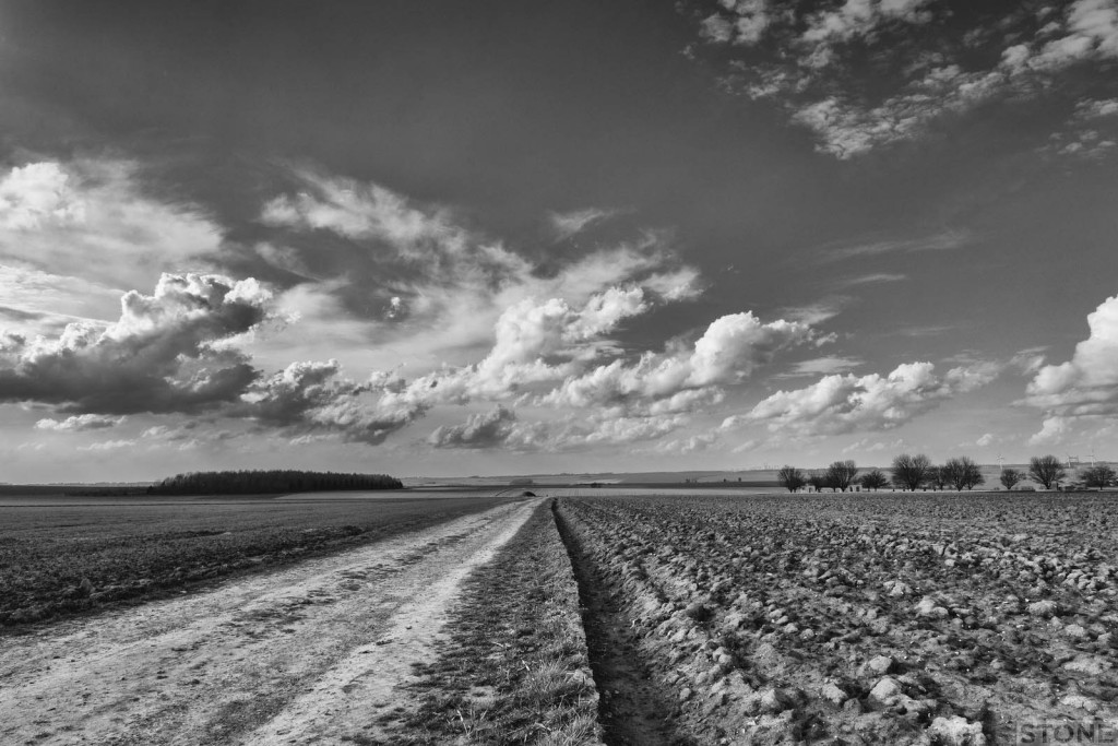 Path to Regina Trench Corcelette Somme © Nick Stone