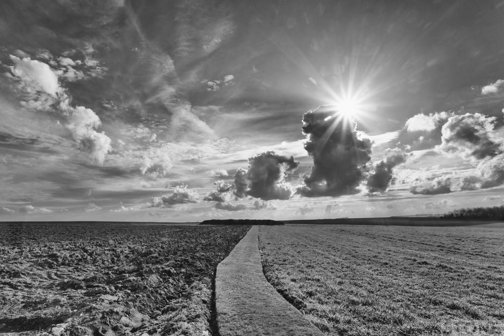 Regina Trench Somme © Nick Stone