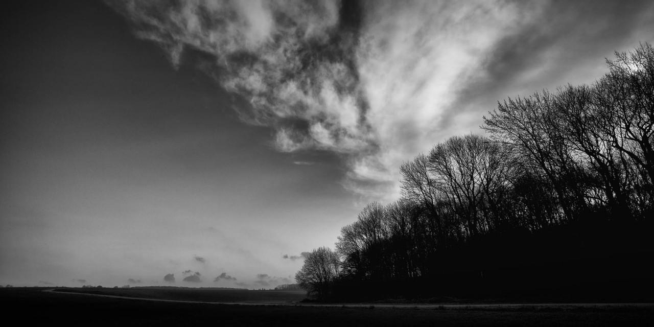 Vanishing Point: Bernafay Wood