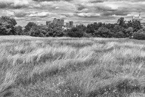 Greenwich burial mounds