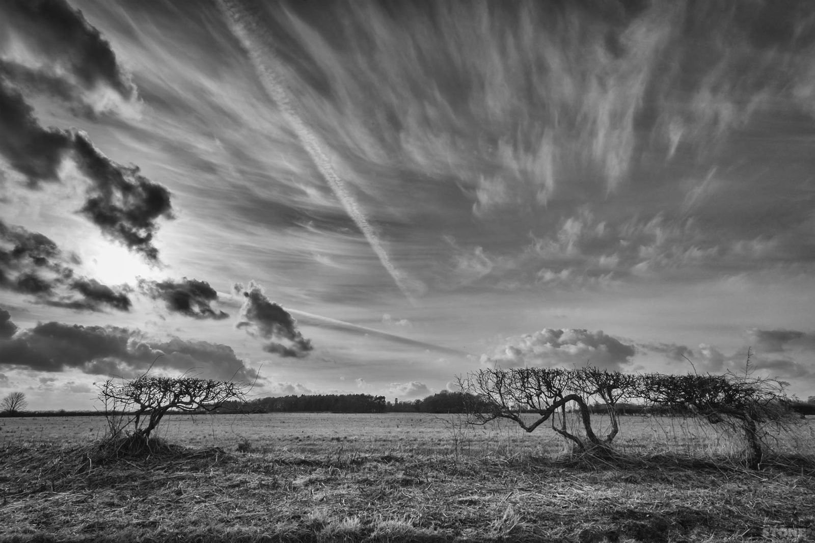 Scottow Norfolk Landscape coltishall