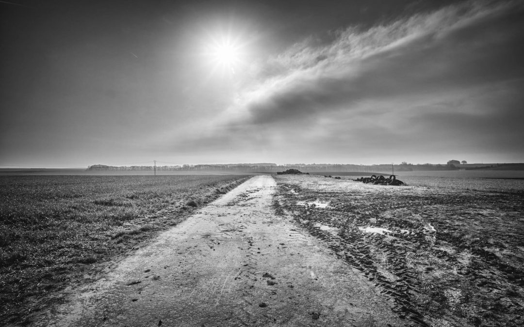 Vanishing Point: Carnoy to Montauban